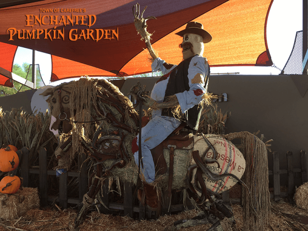 carefree enchanted pumpkin garden scarecrow with Watson's cowboy hat