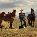 Trent Peterson w Horse