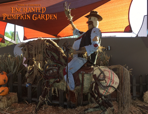 WATSON'S HAT SHOP TEAMS UP WITH RAY VILLAFANE AND THE ENCHANTED PUMPKIN GARDEN