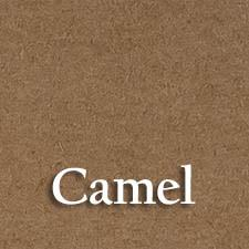 watsons custom color-swatch_camel
