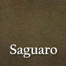 watsons custom color-swatch_saguaro