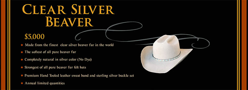 Clear-silver-beaver-hat-price